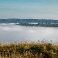 Ватный туман. :: Сергей Бурнышев