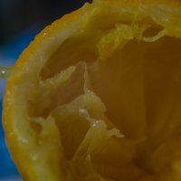 апельсин :: Анастасия Тихонова