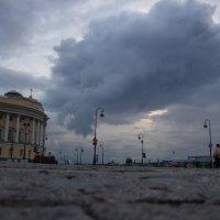 Питер. :: Дмитрий Иншин