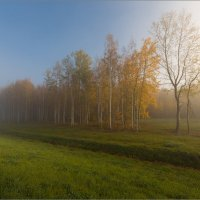 Осень. :: Юрий
