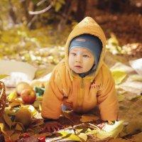 Осенний пикник :: Мария Буданова