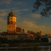 Замок в выборге :: Дмитрий Рутковский