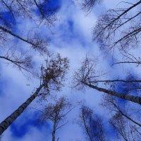 небо :: Ильназ Фархутдинов