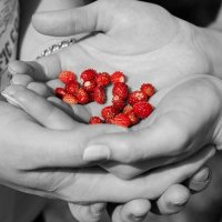 я раскрашу жизнь твою яркими красками...... :: photographer Anna Voron