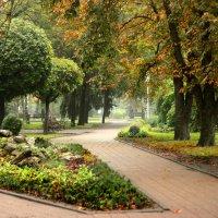 Осень :: Виктория Лешукович