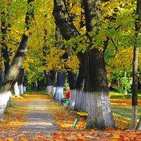 Осенняя :: Александр Лукин
