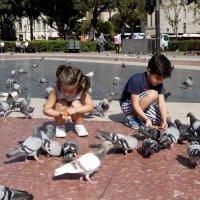дети и голуби :: Тамара Бердыева