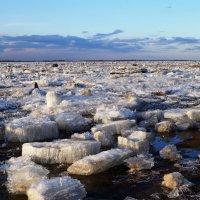 Ледоход на Амуре :: Виктория Коплык