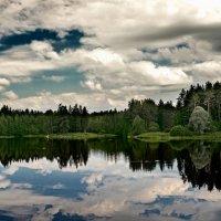озеро в лесу :: ник. петрович земцов