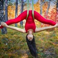 Воздушная гимнастка :: Aleksey DavidoFF