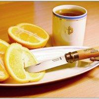 Опинель с морским апельсином :: Кай-8 (Ярослав) Забелин