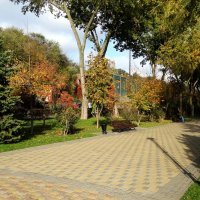 Тёплый солнечный денёк в октябре... :: Тамара (st.tamara)