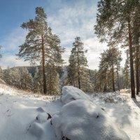свежий снег :: Дамир Белоколенко