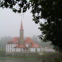 Туманное утро :: Татьяна Гилепп