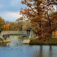 Гатчина, парк :: navalon M