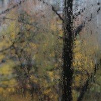 Вид из окна. :: Сергей Касимов