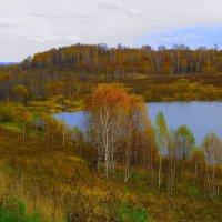Золотая осень :: Нина северянка