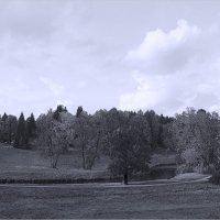 В долине реки Славянки :: Михаил Лесин