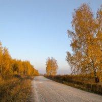 Золотая осень :: Алексей Окунеев