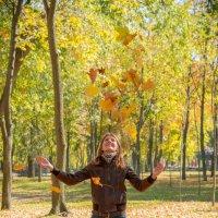 Осень :: Alex P.
