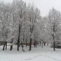 Зима :: Максим Мартыненко
