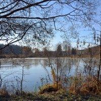 Пейзаж конца октября. :: Oleg4618 Шутченко