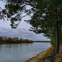 Осенью над рекой. :: Владимир Михайлович Дадочкин