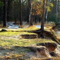 Речные промерзают берега... :: Лесо-Вед (Баранов)