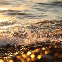 Море, Лазаревское :: Марина Щуцких