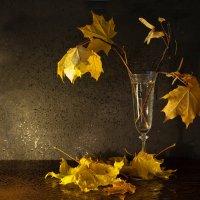 Листья желтые :: Татьяна Панчешная