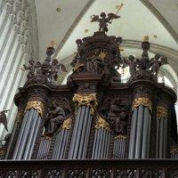 Главный орган Собора Антверпенской Богоматери :: Елена Павлова (Смолова)