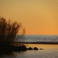 Чёрное море. Абхазия :: Tasha