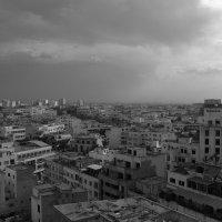 Касабланка. :: Светлана marokkanka