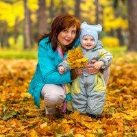 Осенний букет :: Евгений Казаков
