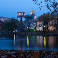 Вид на Новодевичий монастырь :: Petr