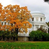 Осень на Елагином острове ... :: Надежда Млат