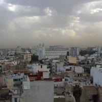 Касабланка 2014 :: Светлана marokkanka