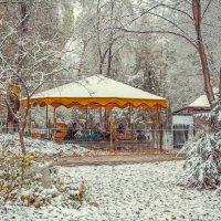 В парке. :: Галина Эсенова