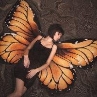 Butterfly :: Дарья Сивачук
