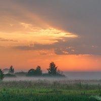 Раннее утро :: Анатолий 71