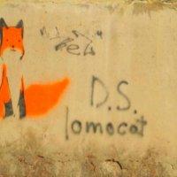 """Street Art """"fox"""" :: Аня Андрейчук"""