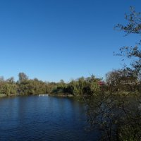 Октябрь,пруд,ясно и прохладно... :: Тамара (st.tamara)