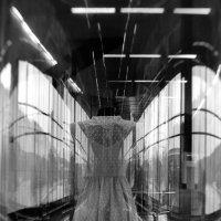 Индустриальная бабочка :: Давид Федулов