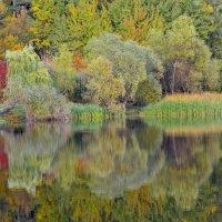 Любуется Осень своим отражением!.. :: Ольга Русанова (olg-rusanowa2010)