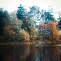 Осень :: Василиса Докторова