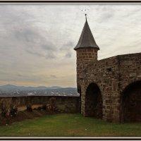 Старый замок :: Alexander Andronik