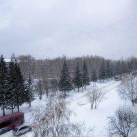 Снег кружится , летает , летает . :: Мила Бовкун