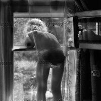 Когда вселенная в окне... :: Ирина Данилова