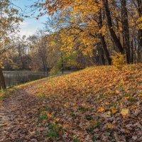 Снова Осень закружила карусель мелодий! :: Gene Brumer