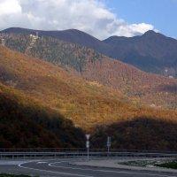 Осень в горах :: Виолетта